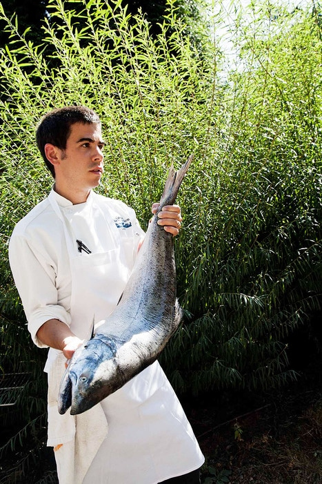 Chef Chris Weber of Washington State's Herbfarm, with a king salmon he'll serve.